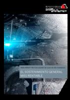 El sostenimiento general más rentable (A4 Format)