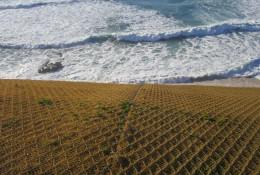 Praia de São Bernadino in 2015, directly after installation