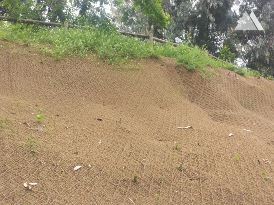 Slope Protection - Bosque Santiago 2015