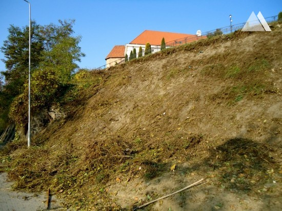 Slope stabilization on the Castle Hill 2011 - Geobrugg