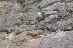 Schäferkalk 2012 - Geobrugg