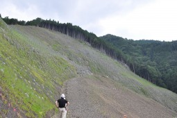Slope Protection - Shimizu district North-South 2016