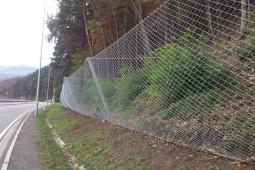 Piwniczna-Zdrój: Droga Krajowa DK87 2016 - Geobrugg