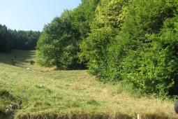 Predeluț 2012 - Geobrugg