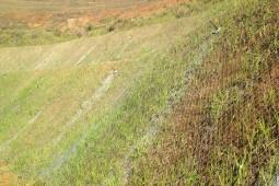 Talud Montemar 2016 - Geobrugg