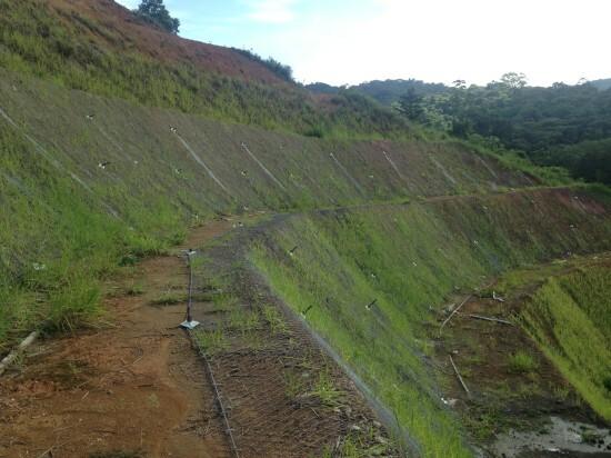 Estabilização de taludes - Montemar 2016