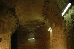 Emmi Kaltbach Cave 2010 - Geobrugg