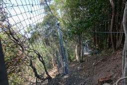 Bulli Pass (1) 2017 - Geobrugg