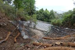 Bulli Pass (2) 2017 - Geobrugg