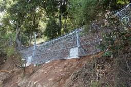Hangmuren- und Murgangschutz - Bulli Pass (2) 2017