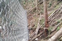 Monserrate Costado Sur 2017 - Geobrugg