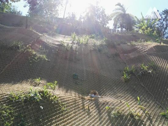 Укрепление склонов - Topaipi 2017