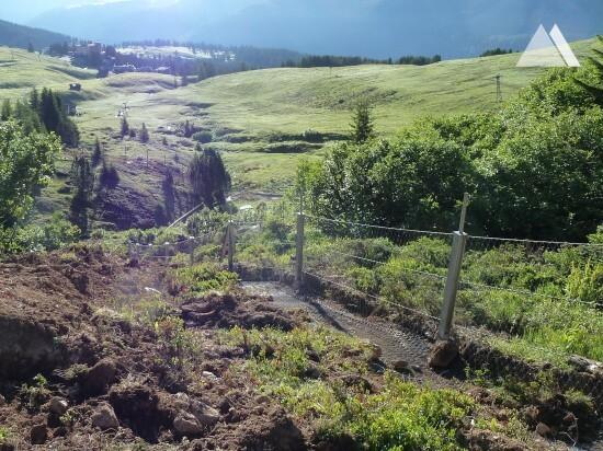 Impact Protection - Bear Sanctuary Arosa 2018