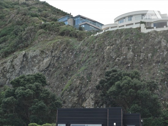 Coastal Ecology Lab, Victoria University of Wellington 2018 - Geobrugg