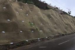 La Marina Road Cartagena 2018 - Geobrugg