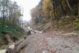 Brendenbach 2015 - Geobrugg