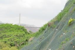 Укрепление склонов - Talud Paraíso 2019