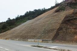 T-350 Road   Valdivia 2015 - Geobrugg