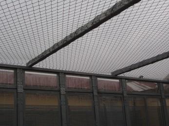 Prison walk yard outbreak protection 2013 - Geobrugg