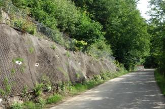 Lauter-Bernsbach TECCO®   SPIDER® 2015 - Geobrugg