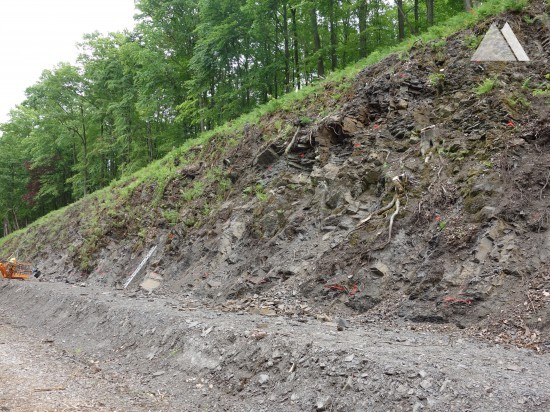 Wetter L527 2014 - Geobrugg