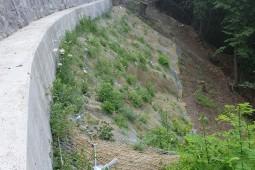 Şev ve Yamaç koruma - Monte Bré, Lugano 2019